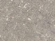 C413CR-Arathea Concrete